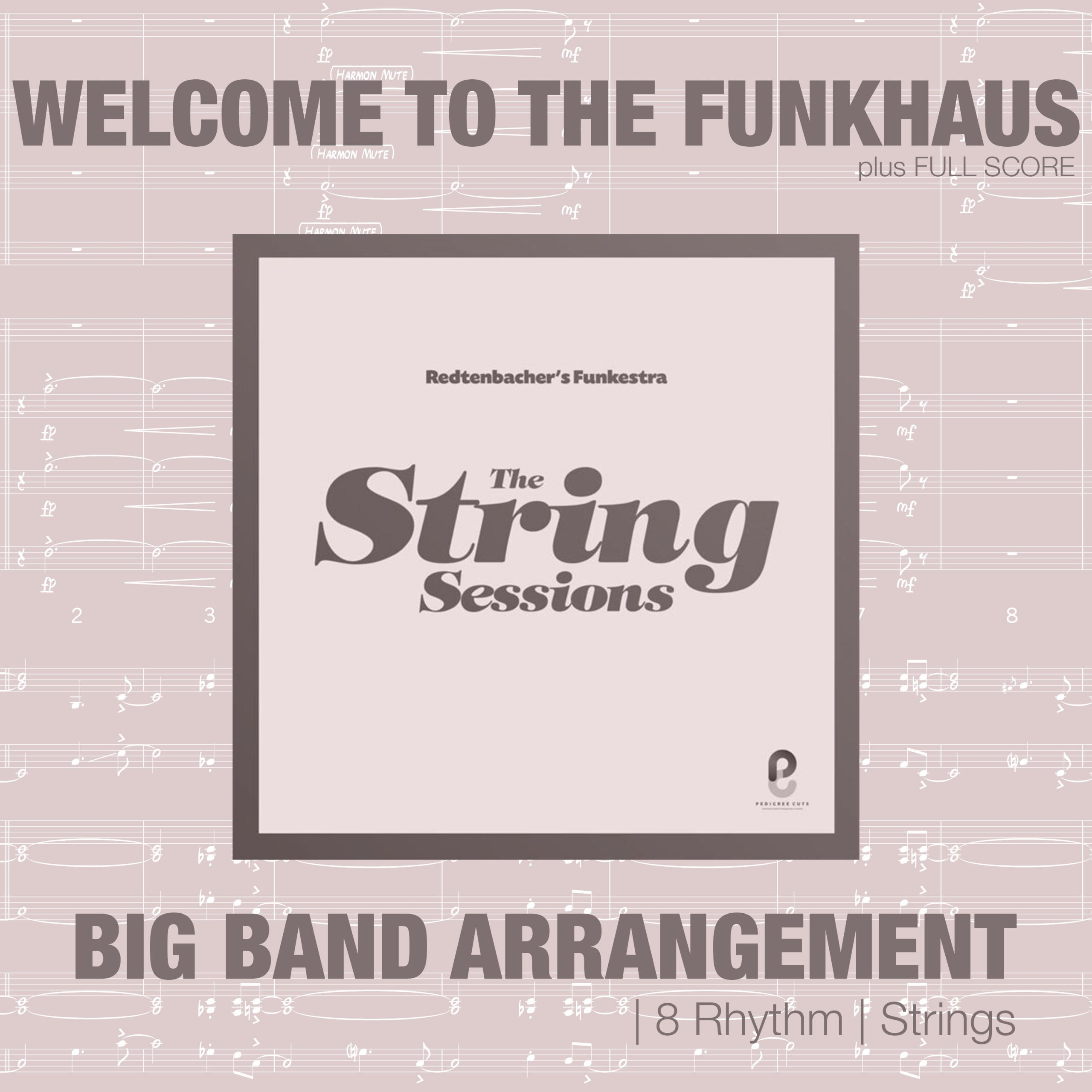 Welcom To The Funkhaus | Strings & Rhythm Section Arrangement